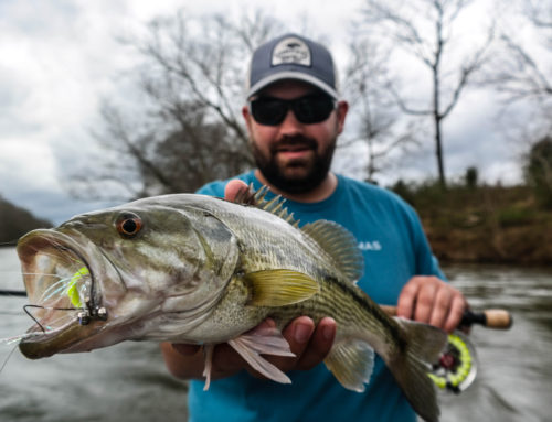 Early Spring River Bassing
