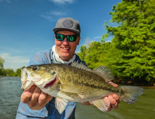 Etowah River Fishing Report 9/17/2018