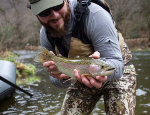 Fishing Report 1/7