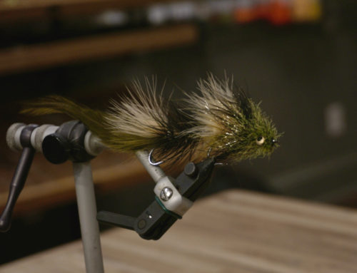 Fly Tying: Hook placement in Articulated Streamers