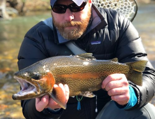 Fishing Report 3/14/2019