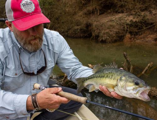 Fishing Report: 3/29/19