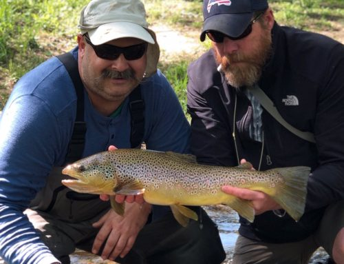 Fishing Report 5/16/2019