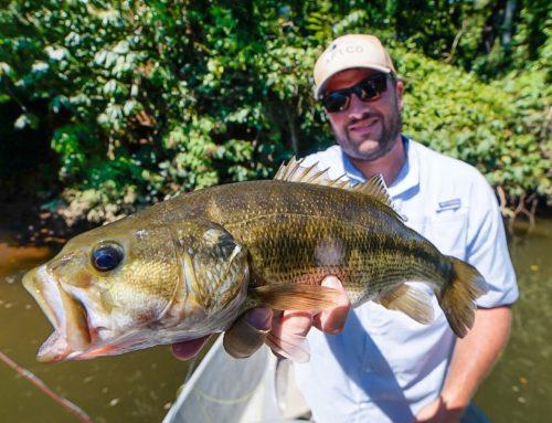 Fishing Report 9/13/2019