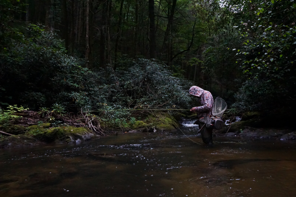 September 5th, 2019 Fishing Report