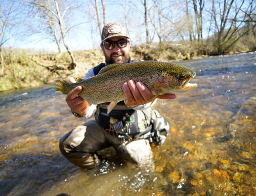 Fishing Report February 6th, 2020